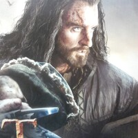 Richard Armitage as Thorin. Support dvd
