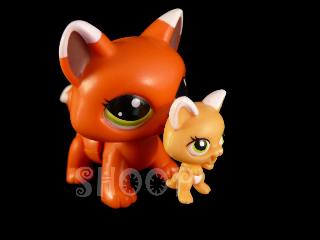 LPS 2491 / 2492