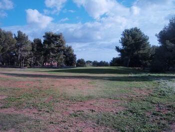 Le long du golf