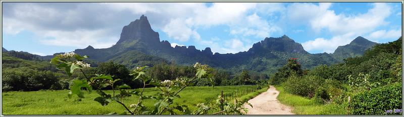 Le superbe Mont Mou'a Roa (880 m) - Moorea - Polynésie française