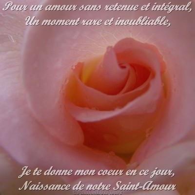 carte amour 100 4873