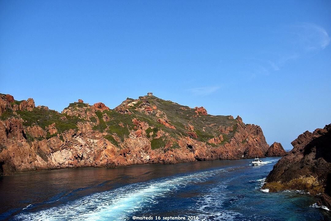 Ile de Gargalo - Réserve de Scandola - Corse