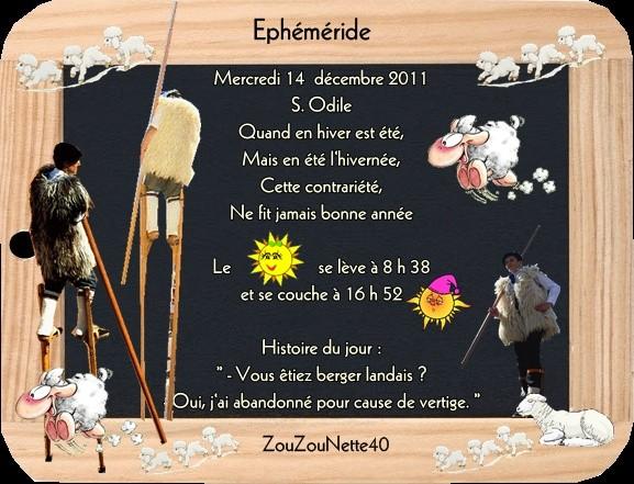 MERCREDI-14-DECEMBRE-2011-.jpg