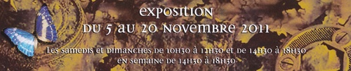 Salon d'Automne 2011 - Les Artistes Associés de Pont-Audemer