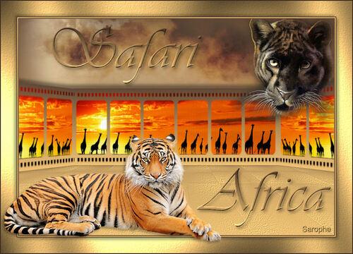 *** Safari ***