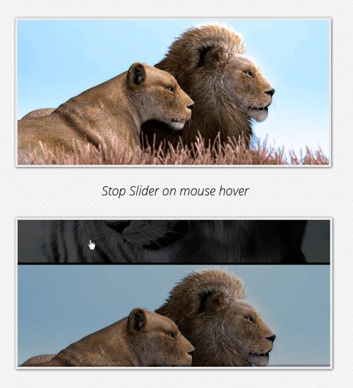 Arrêtez curseur sur le vol stationnaire de la souris
