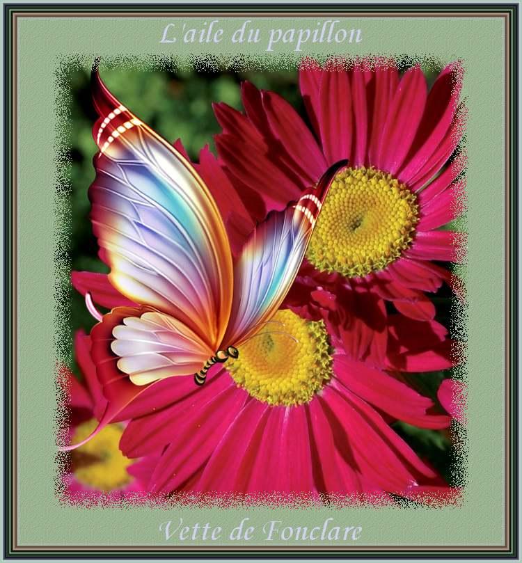 """"""" L'aile du papillon """" poème de Vette de Fonclare"""