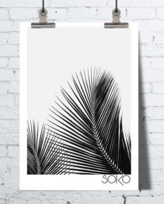 deco palmier