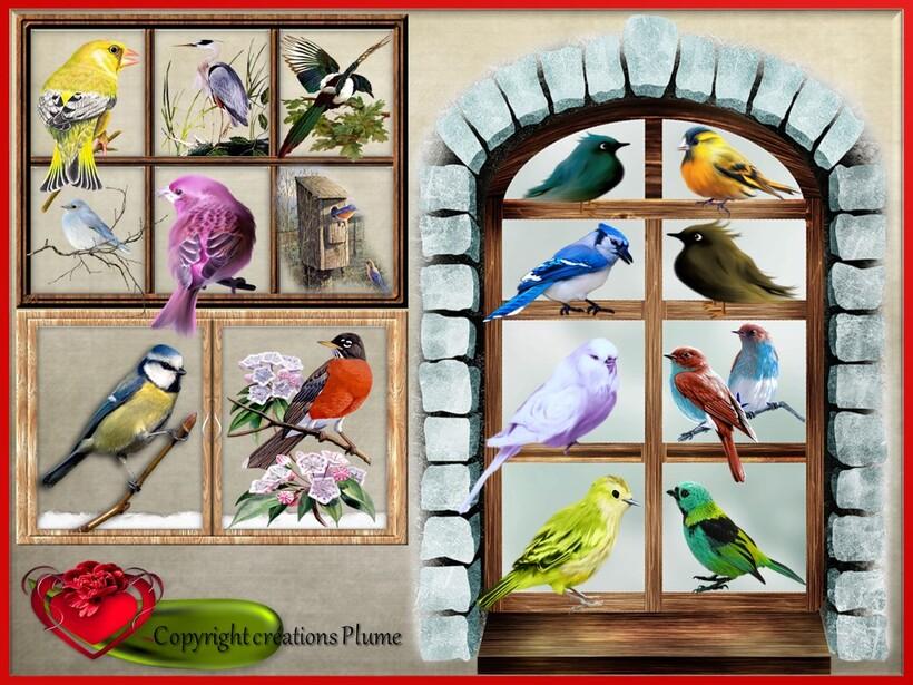 Mosaique d'oiseaux