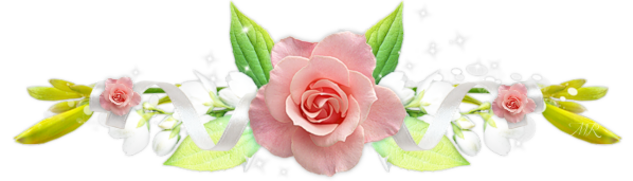 ♥  rose d'amour ♥