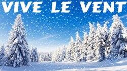 Délire chant de Noël : 3ème jour (Rose de Picardie)