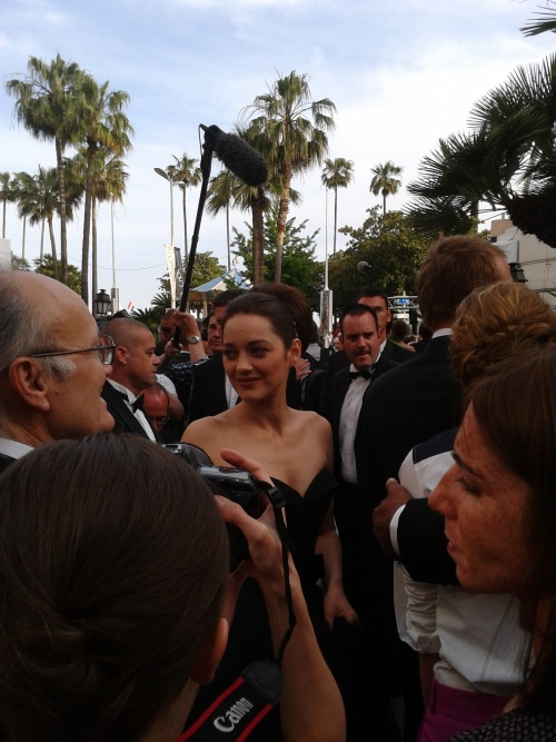 Cannes 2012 17/05/2012