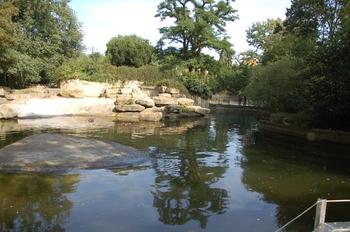 dierenpark emmen d50 122