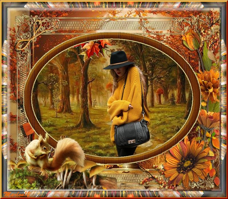 L'automne et ses jolis couleurs