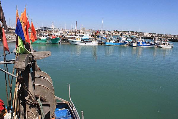 port de pêche royan-1-