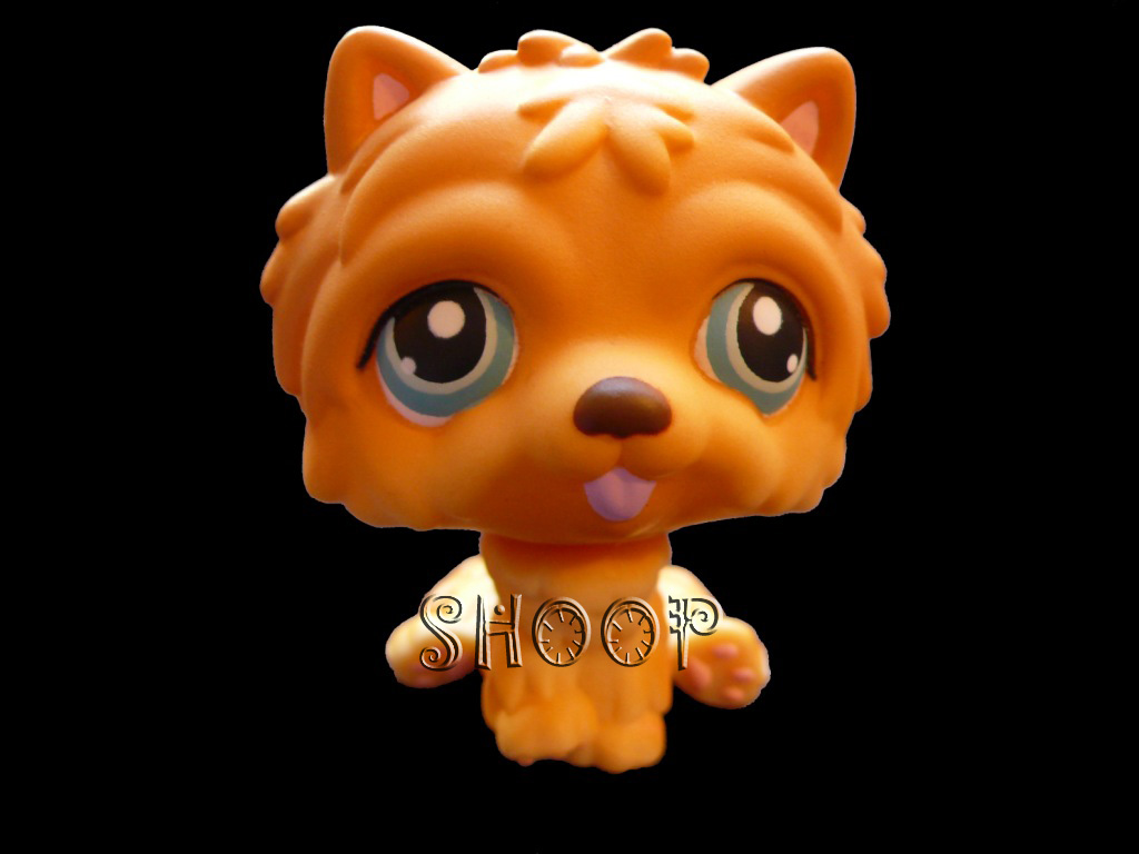 LPS 117