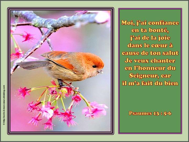 Moi, j'ai confiance en ta bonté - Psaumes 13 : 5-6