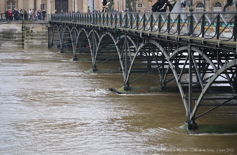 Paris : la Seine poursuit sa lente décrue