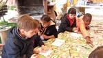 La ferme aux escargots à Saint Pierre de Chandieu