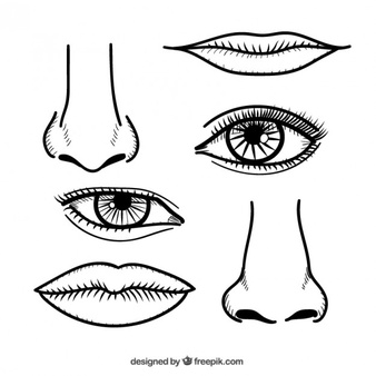 """Résultat de recherche d'images pour """"nez dessin"""""""