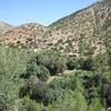 462 Maroc Sur la route d\'Immouzzer