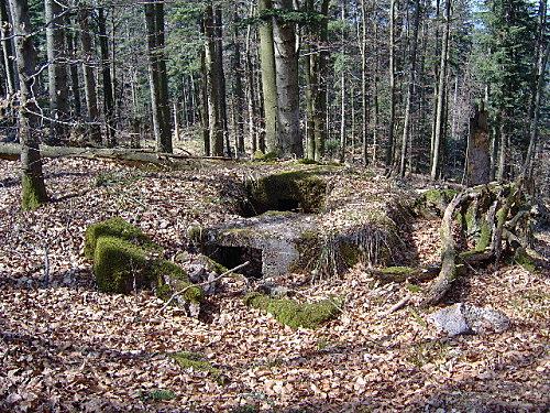 roche pierre piquee neuvevoie derzognier 039