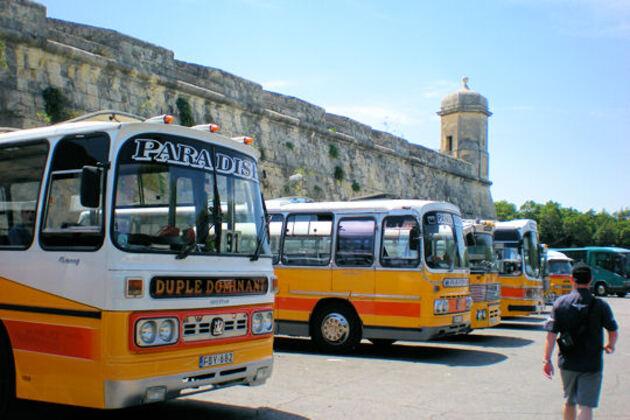 Les bus haut en couleurs