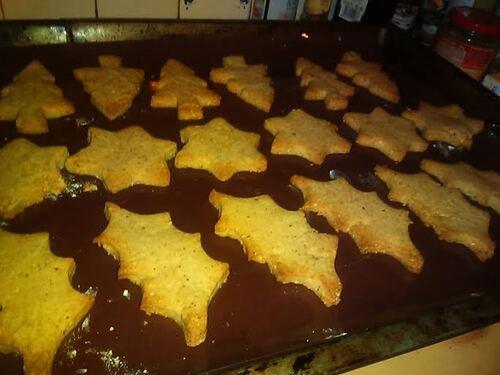 """**Noël** Biscuits aux Marron, noisettes et chocolat {Vegan} et Tisane de Noël **Défi """"Au coin du feu"""""""