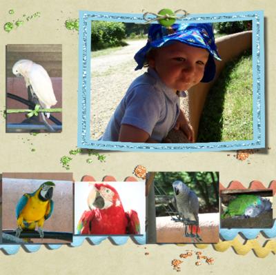 Blog de chipiron :Un chipiron dans les Landes, Un week-end animaux