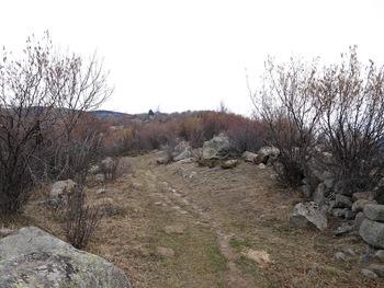 Le sentier de montée à l'Abri de Nartigues