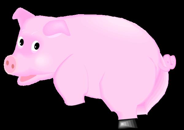 tubes cochons Ecrire un nouvel article