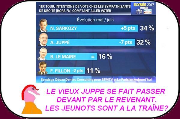 La vente de burkini est dopée alors qu'à gauche tous ne sont pas d'accord au moment du retour de Sarkozy.