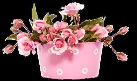 Tubes pots de fleurs en png