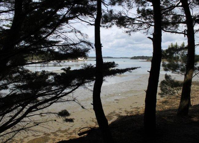 Pointe de l'Ours (18)
