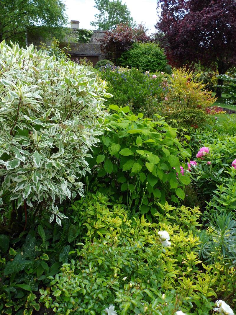 des jardins intimes