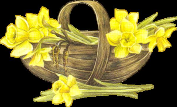 Fleurs de printrmps