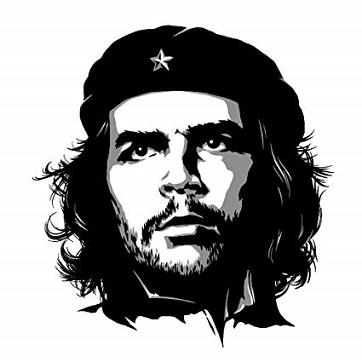 L'anarchie c'est notre but, notre survie ...