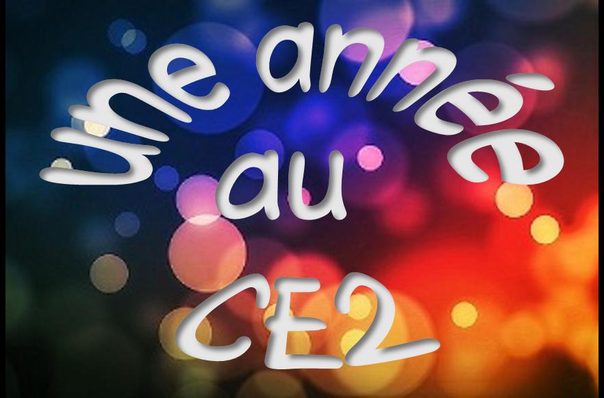 Connu Le Boréal express - Une année au CE2 MQ35