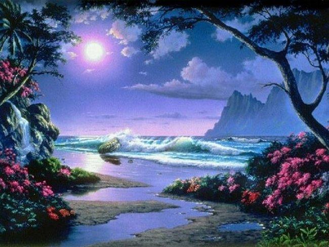 Paysages de mer paradisiaque