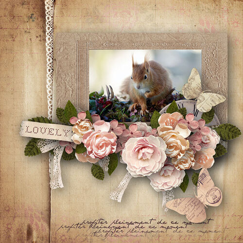 Past Times Roses, scrap kit, dentelle, albums