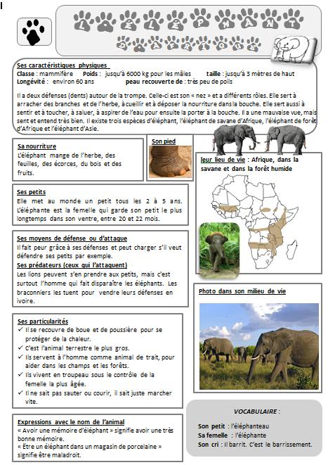 surligner du texte dans un document pdf