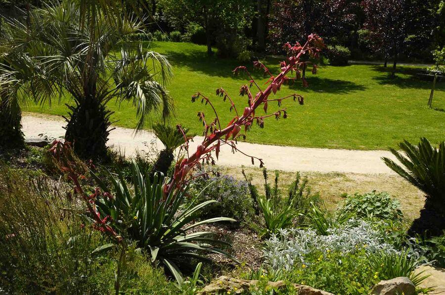 « Jardin des Olfacties-Coëx »