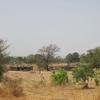 Mali Village sur la piste de Kéniéro