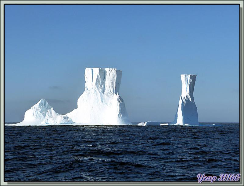 Notre premier iceberg: impressionnant, 50/60 m de hauteur - Passage de Drake - Entre Terre de Feu et Antarctiq