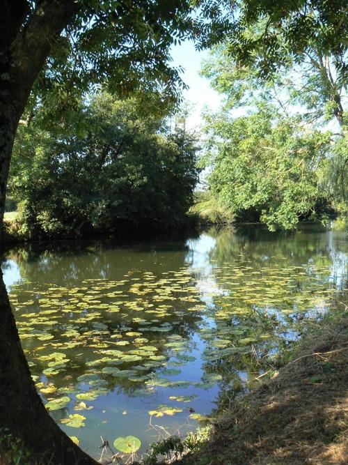 La Sarthe dans l'Orne