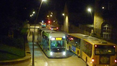 Les bus sont nombreux mais vides