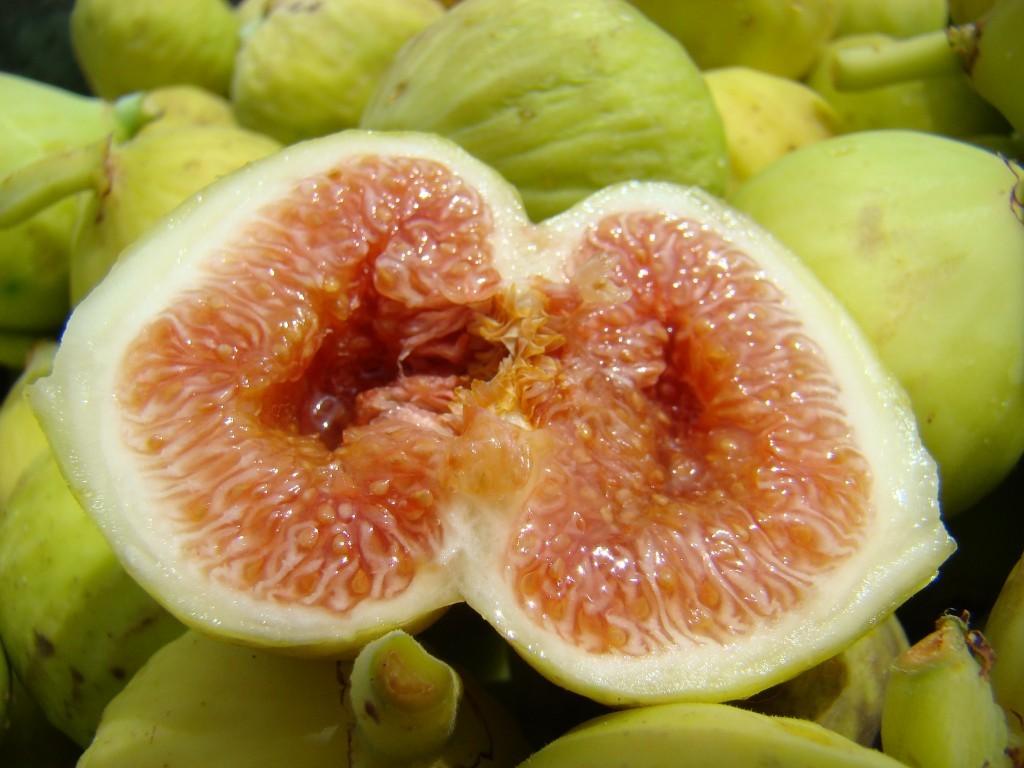 Les bons légumes provençaux (comment les reconnaitre)