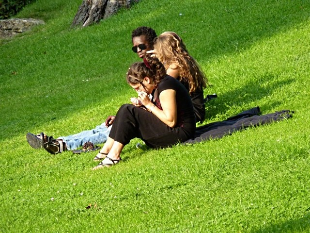 Jardins et pelouses de Metz 11 mp1357