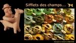 0S040 Une formidable étude sur les sifflets en terre cuite