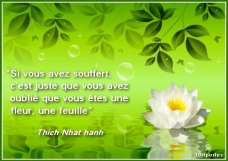 citation01-tnh
